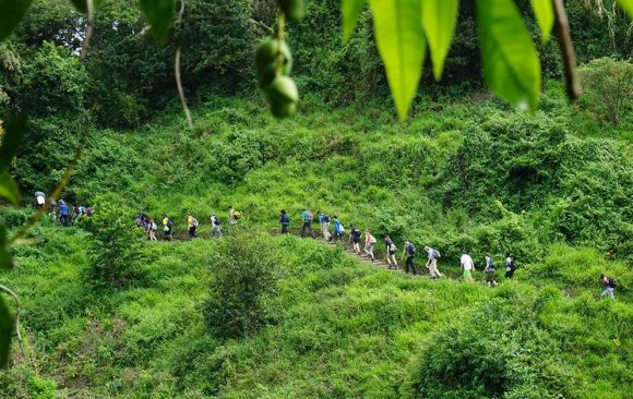 Home - The International Ecotourism Society