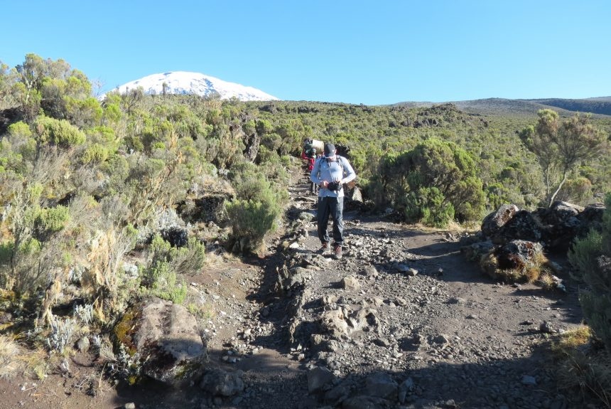 Kilimanjaro ecotourism routes recommended for climbing trips